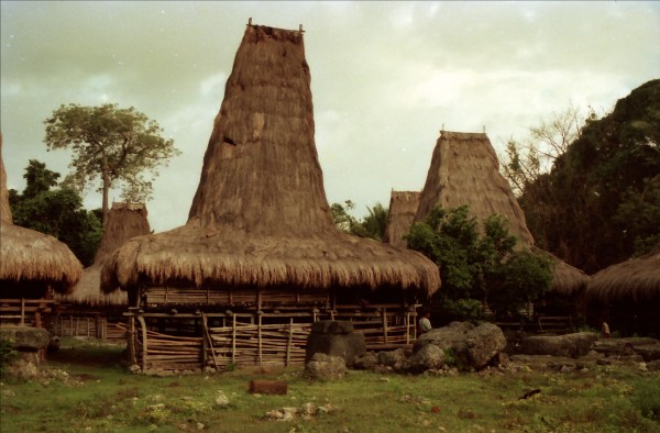 Rumah Adat Sumba Barat - House of West Sumba in Anakkalang, Indonesia, photo by Robert M Erwinn
